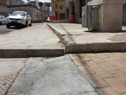 via roma alezio - gatto abbandonato (2)