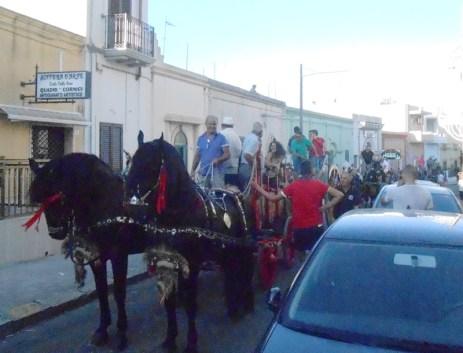 Cavalli e traini