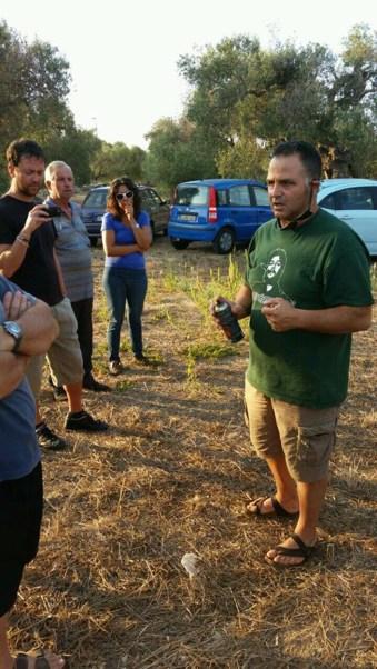 ulivi ivano gioffreda -Spazi Popolari- Agricoltura Organica rigenerativa (6)