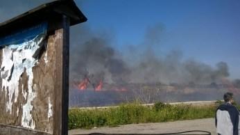 incendio li foggi (10)