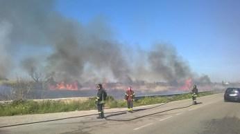 incendio li foggi (14)