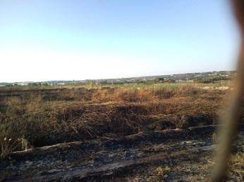 l'area bruciata dagli incendi