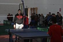 tennistavolo 5