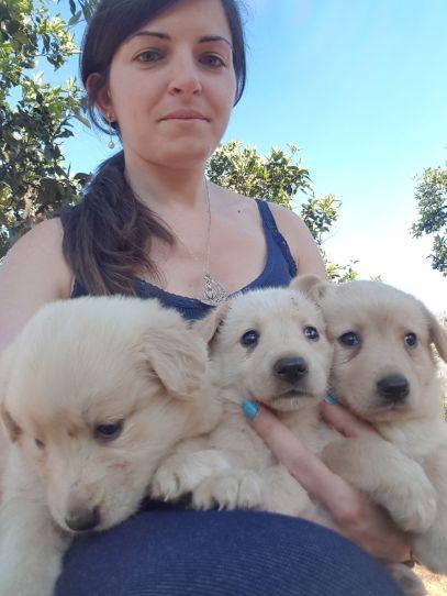 Sara Mariello e i suoi cuccioli