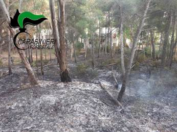 Incendio Lido Conchiglie (1)