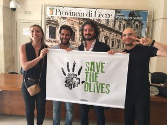 Conferenza stampa Save the Olives