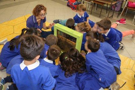 Un momento dei laboratori sull'apicoltura nelle scuole