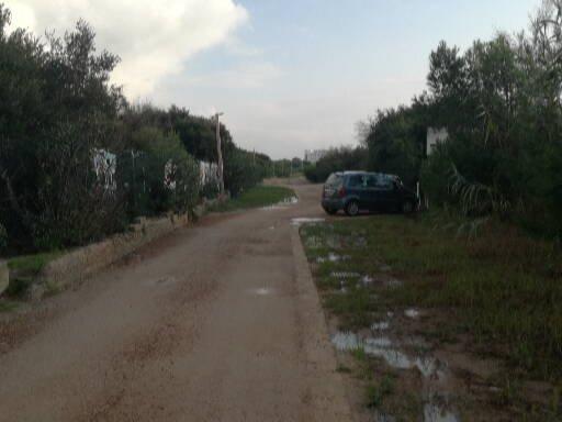 Gallipoli, litoranea sud 6.10 (5)