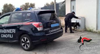 Carabinieri, nucleo cinofili