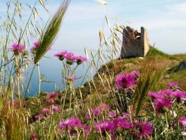 Parco naturale Otranto Tricase Leuca