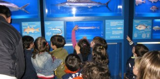 Bambini al museo di biologia marina di Porto Cesareo
