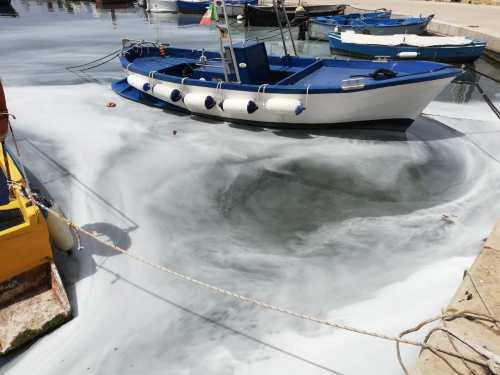 Porto Cesareo, la chiazza in mare
