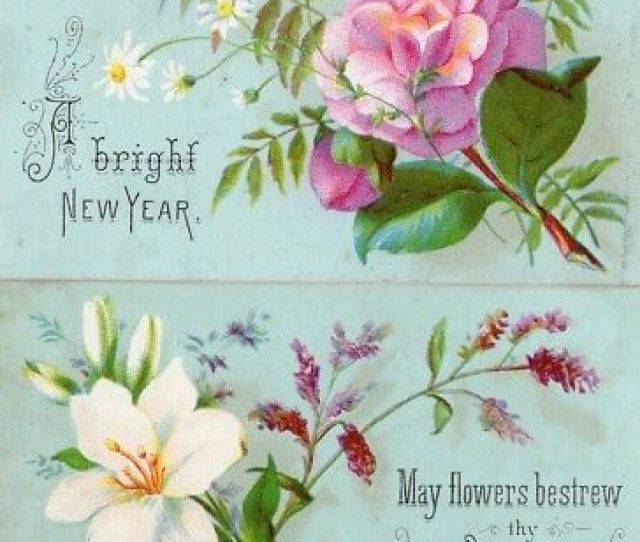 S Victorian New Years Greeting Card Lot Selling Lot Of Scrap Diecuts