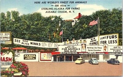 Sterling-Alaska FUR Farms, AUSABLE CHASM, NY, Advertising Linen Postcard - Teich
