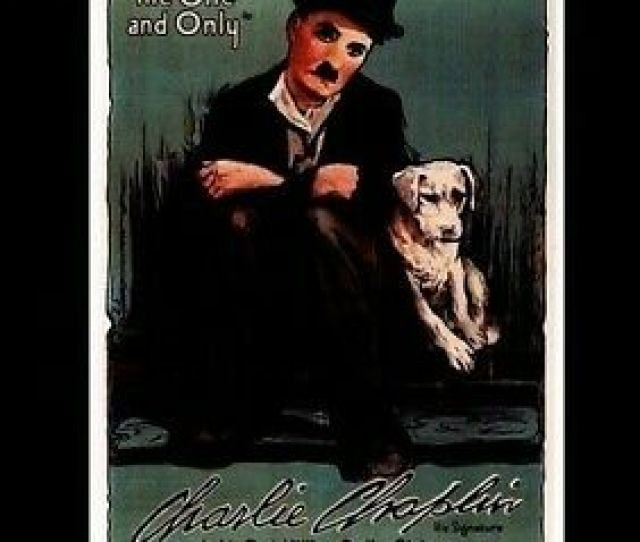 Dogs Life New Dvd Manufactured On Demand Ntsc Format