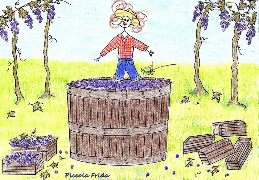 disegno - illustrazione pigiatura dell'uva con i piedi - vendemmia - autunno - mosto - vino - uva