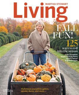 La copertina di un numero della rivista Living