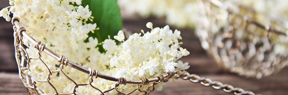 Sapori floreali