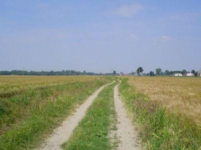 campo agricoltura