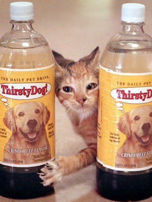 bottled-water-for-pets-1