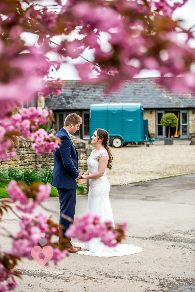 Blossom in the spring at Winkworth farm. Preferred photographer pickin images for photos.
