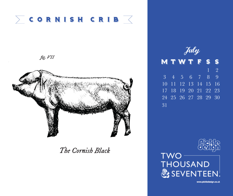 Download the month of July and our illustration of the Cornish Black pig for your desktop screen, tablet or mobile