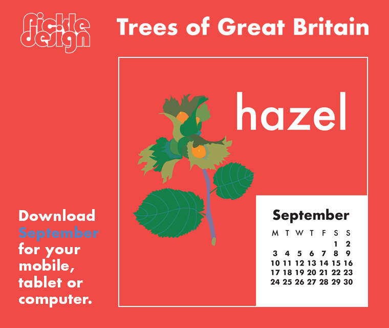 Download the free September retro illustrated calendar of the Hazel tree, one of our Great British trees for your desktop, mobile or tablet