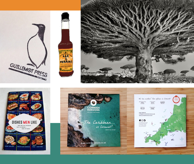 Stamps, ancient trees, Worcester sauce and brochure design