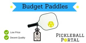 Cheap Pickleball Paddles   2021 Best Quality Picks Under $35