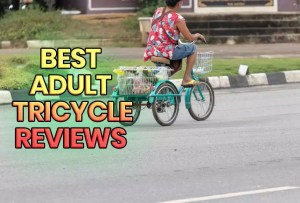Top 6 Best Adult Tricycle Reviews in 2020: [Buying Guide NEW]