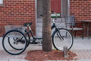Schwinn Meridian Review – Best Tricycle For Adults