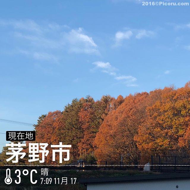 おはようございます!寒いっす!