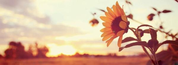 25 Beautiful Facebook Covers   PicsHunger