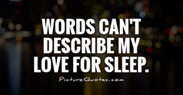 Words cant describe my love for sleep