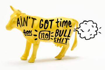 Shit Quotes Ain't got time for no bull shit