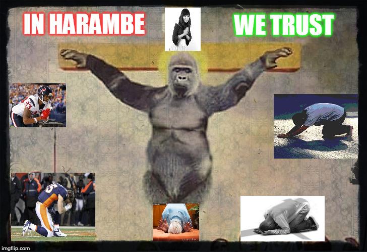 In Harambe We Trust Harambe Meme