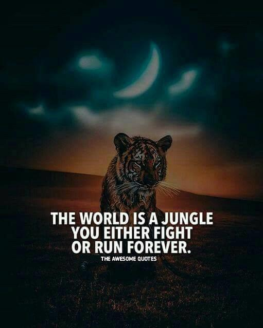 Awesome Quotes the world is a jungle you either fight