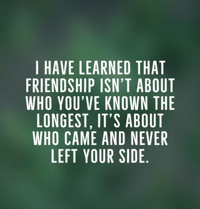 Best Friend Quotes 01