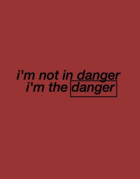 Fantastic Danger Quotes