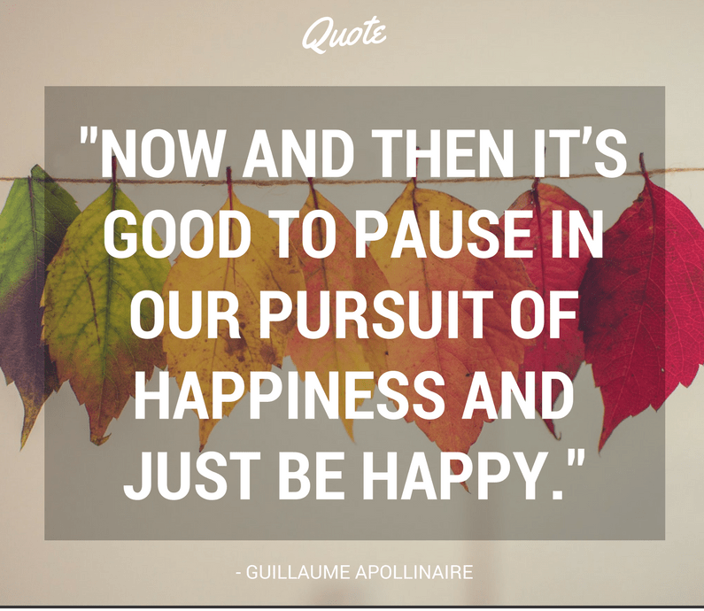 Happiness Quotes now and then it's good to pause in