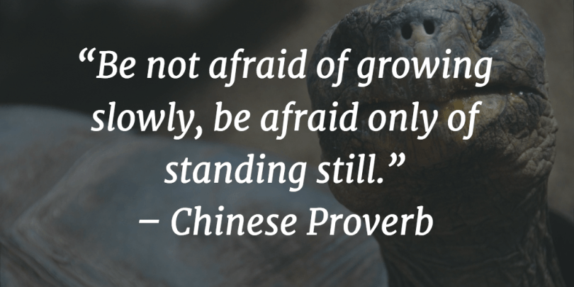 Motivational Success Quotes, Saying and Quotations images be not afraid of growing slowly, be afraid only of standing still.