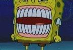 Laughing  Spongebob Dank Memes Spongebob