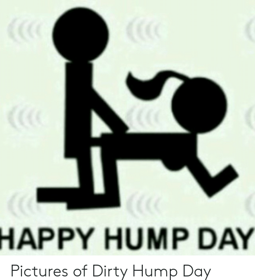 Amazing Hump Day Pictures hump day