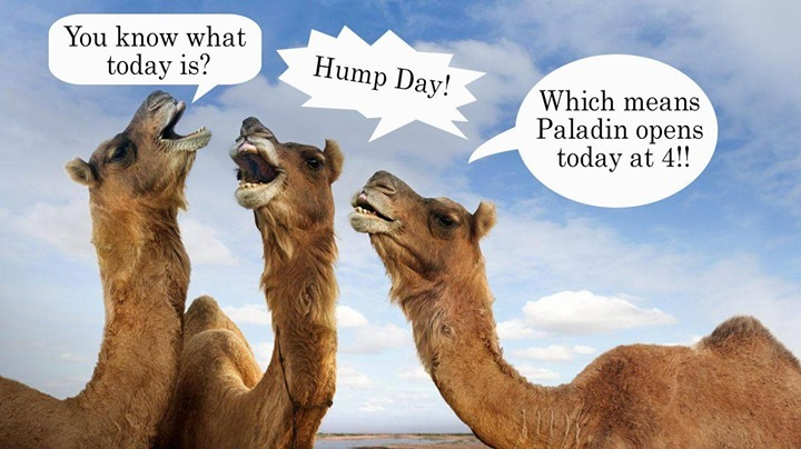 Amazing Hump Day Pictures you know what today is. hump day.. which means paladin opens today at 4!!