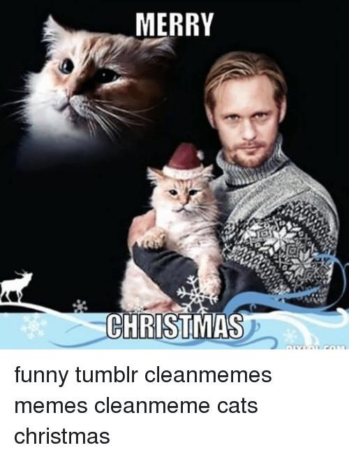 Merry Christmas Meme 06