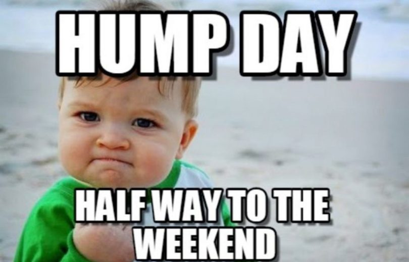 Cool Hump Day Memes With A Cute Baby Face