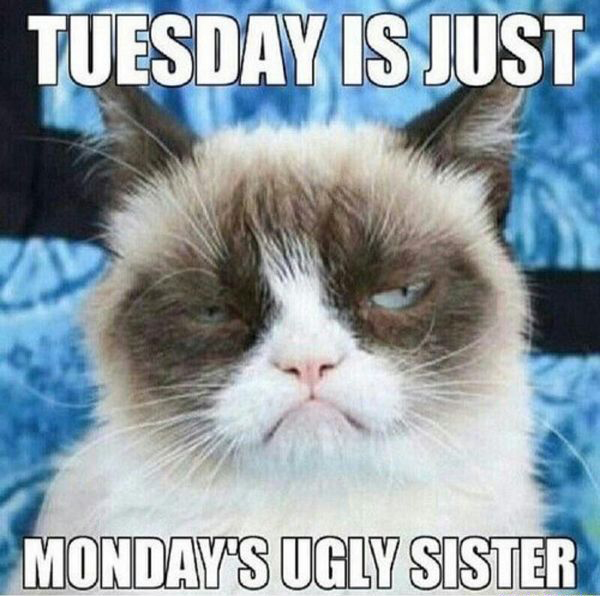 Tuesday Is Just Mondays Ugly Sister