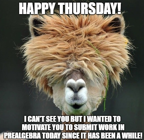 Very Funny Thursday Memes With A Hidden Mouth Of A Donkey