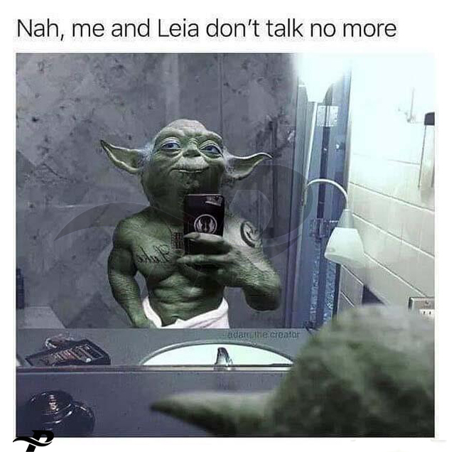 funny yoda memes hah, me and leia don't talk no more