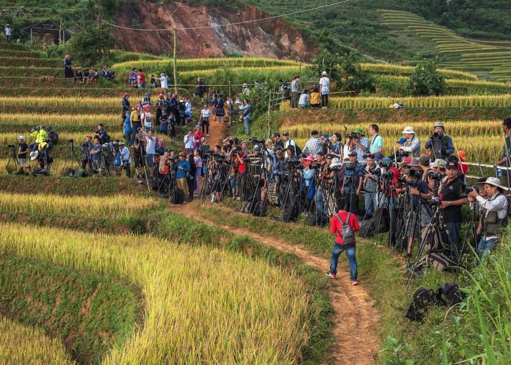 Mu Cang Chai'de tripodlarıyla sıraya giren büyük bir fotoğrafçı grubu